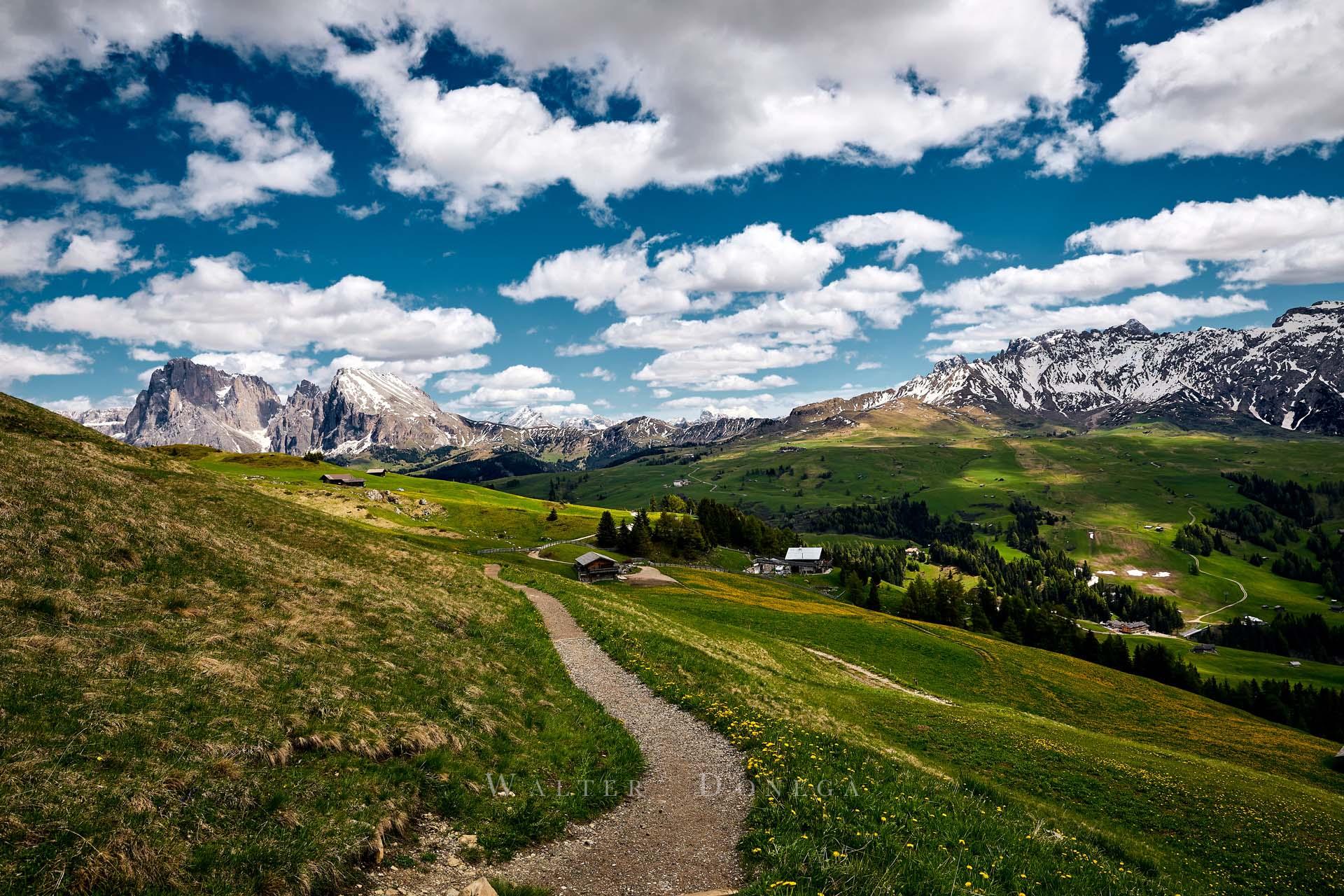 Prati dell'Alpe