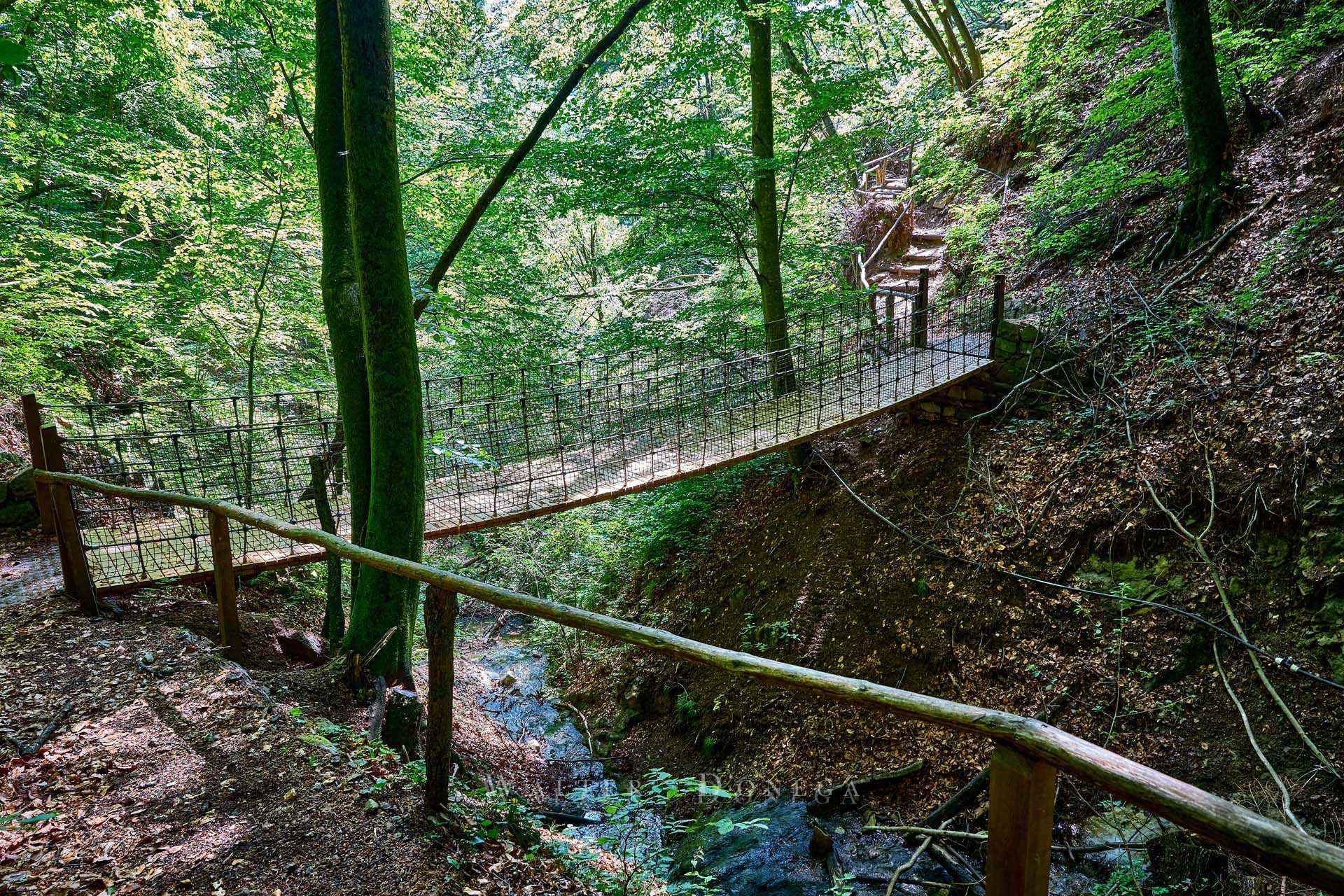 Oachner Höfenweg